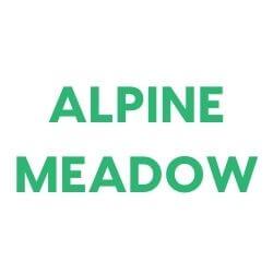 Sudsy Alpine Meadow Shampoo Bar for Dogs