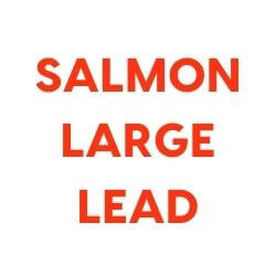 Training Starter Pack with Salmon and Large Lead