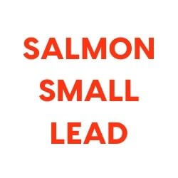 Training Starter Pack with Salmon and Small Lead
