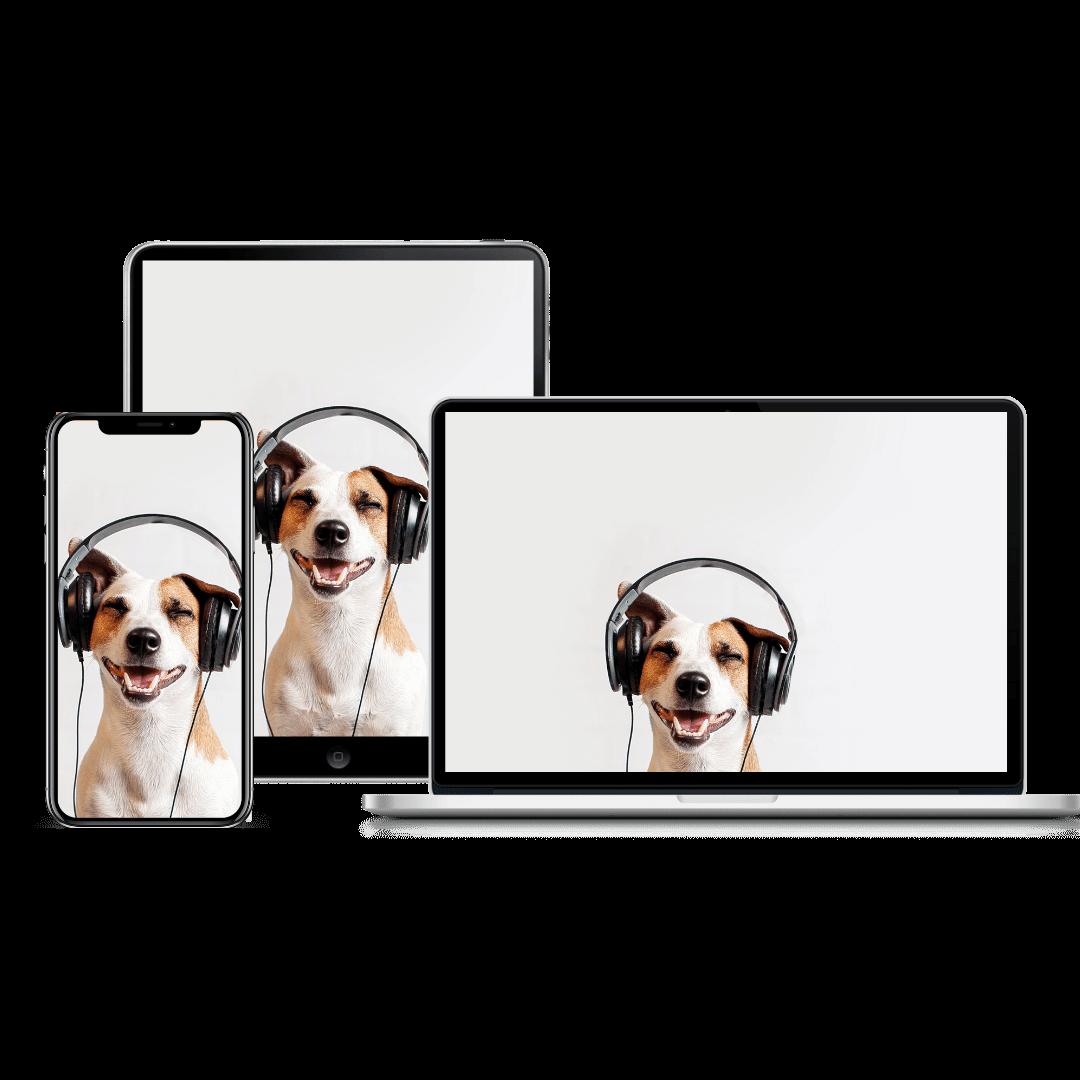 dog training sounds product image | Pupford