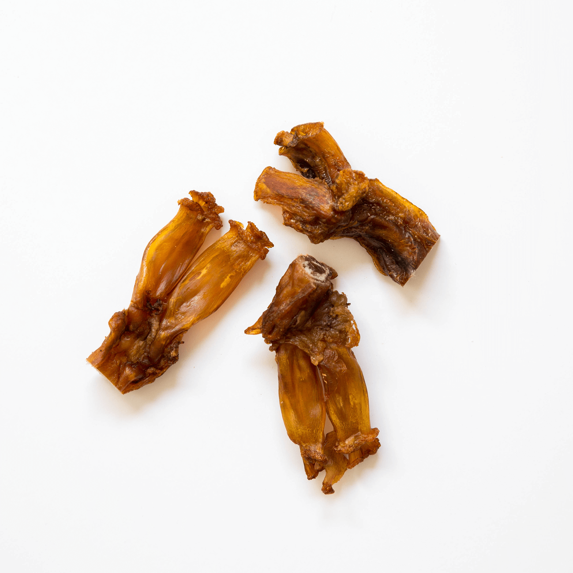 Beef-Tendons on white background | Pupford