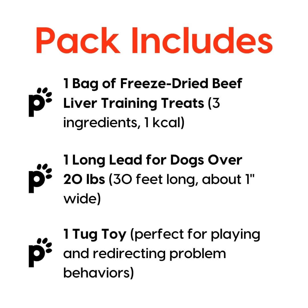 training starter pack beef liver large lead inclusions | Pupford