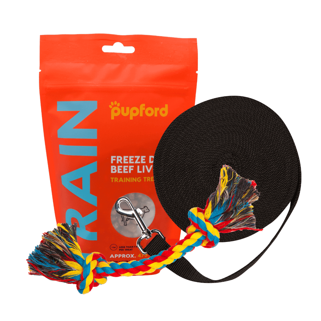 Training-Starter-Pack-with-beef-liver-large-lead | Pupford
