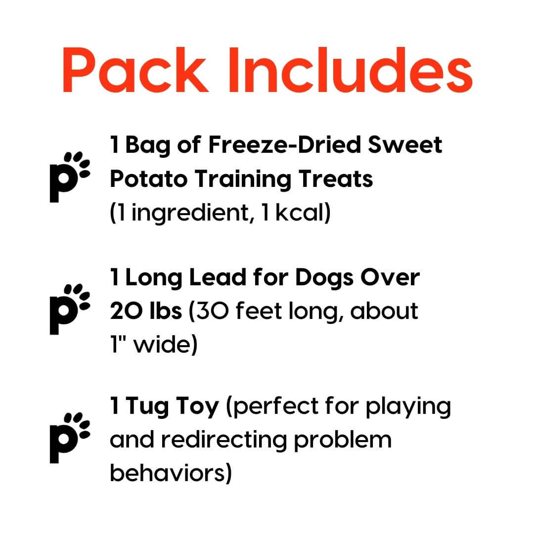 training starter pack sweet potato large lead inclusions | Pupford