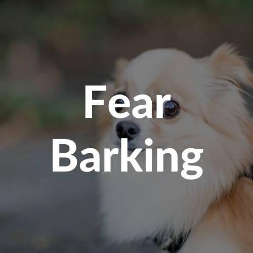fear-barking-thumbnail | Pupford