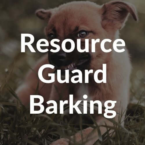 resource-guard-barking-thumbnail | Pupford