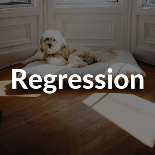 regression-thumbnail | Pupford