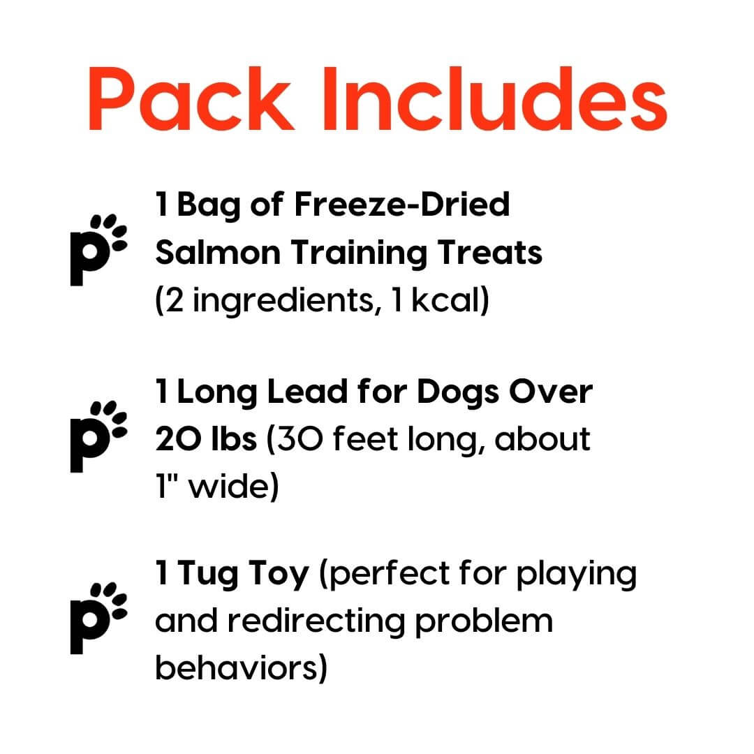 training starter pack salmon large lead inclusions | Pupford