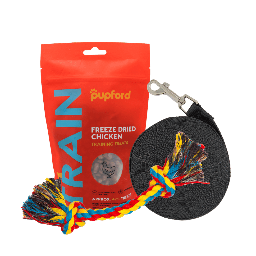 Training-Starter-Pack-with-chicken-treat-small-lead | Pupford