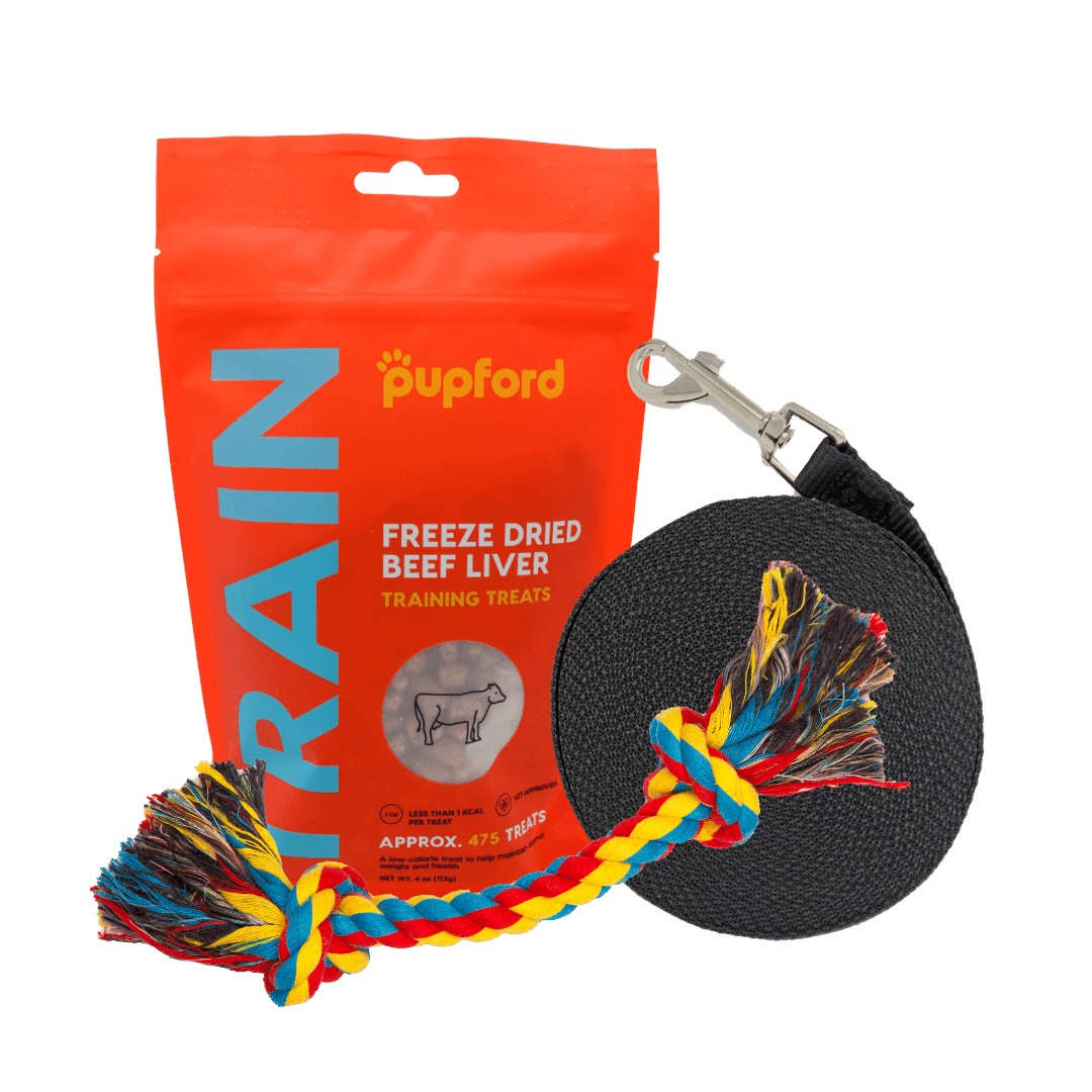 Training-Starter-Pack-with-beef-liver-small-lead | Pupford