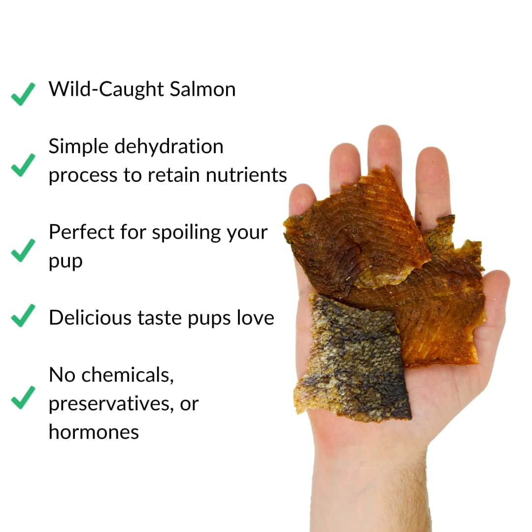 salmon-jerky-in-hand-with-benefits | Pupford