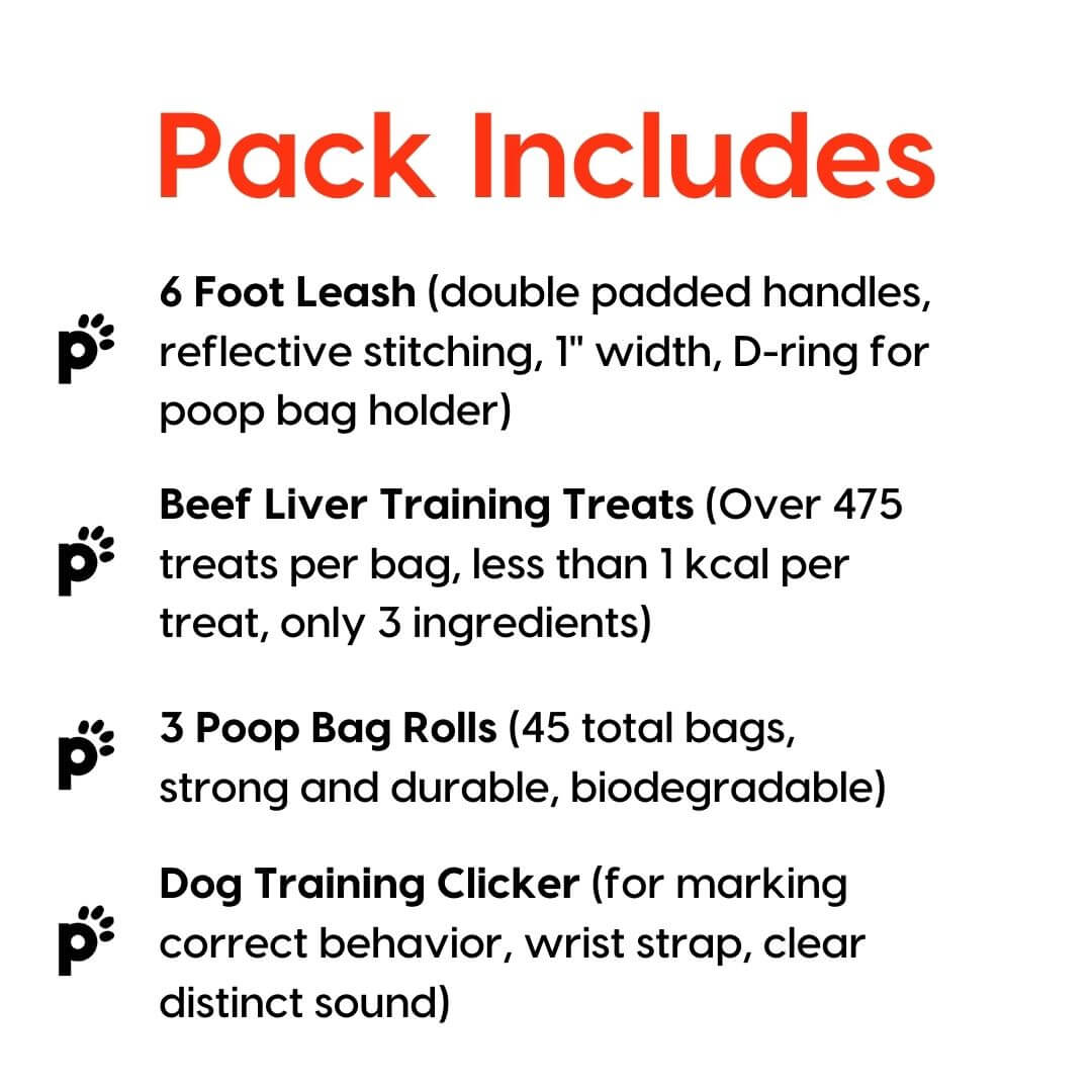 leash training pack inclusions | Pupford