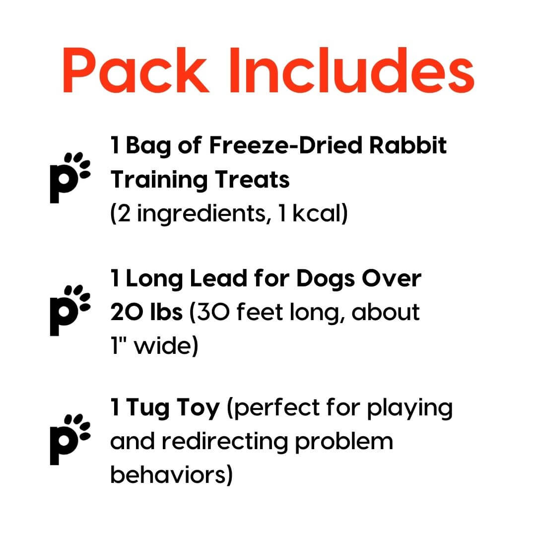 training starter pack rabbit large lead inclusions | Pupford
