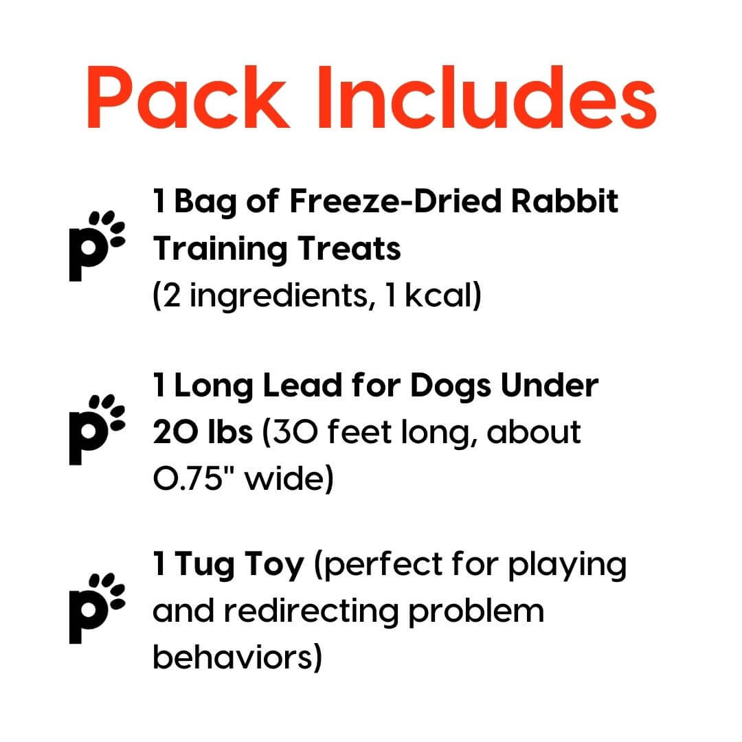training starter pack rabbit small lead inclusions | Pupford