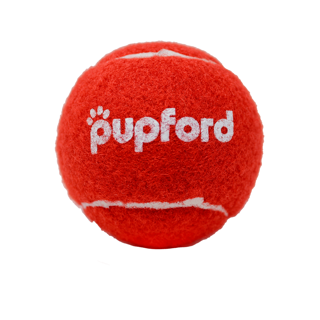 Pupford-Red-Tennis-Ball-Product-Image | Pupford