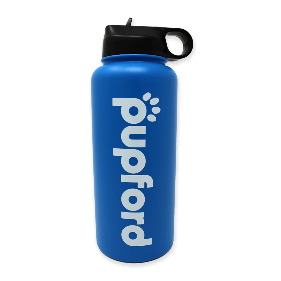 Blue-Insulated-Water-Bottle-Main-Image | Pupford