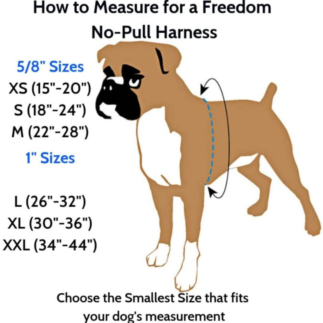 how to measure for a freedom no-pull harness | Pupford