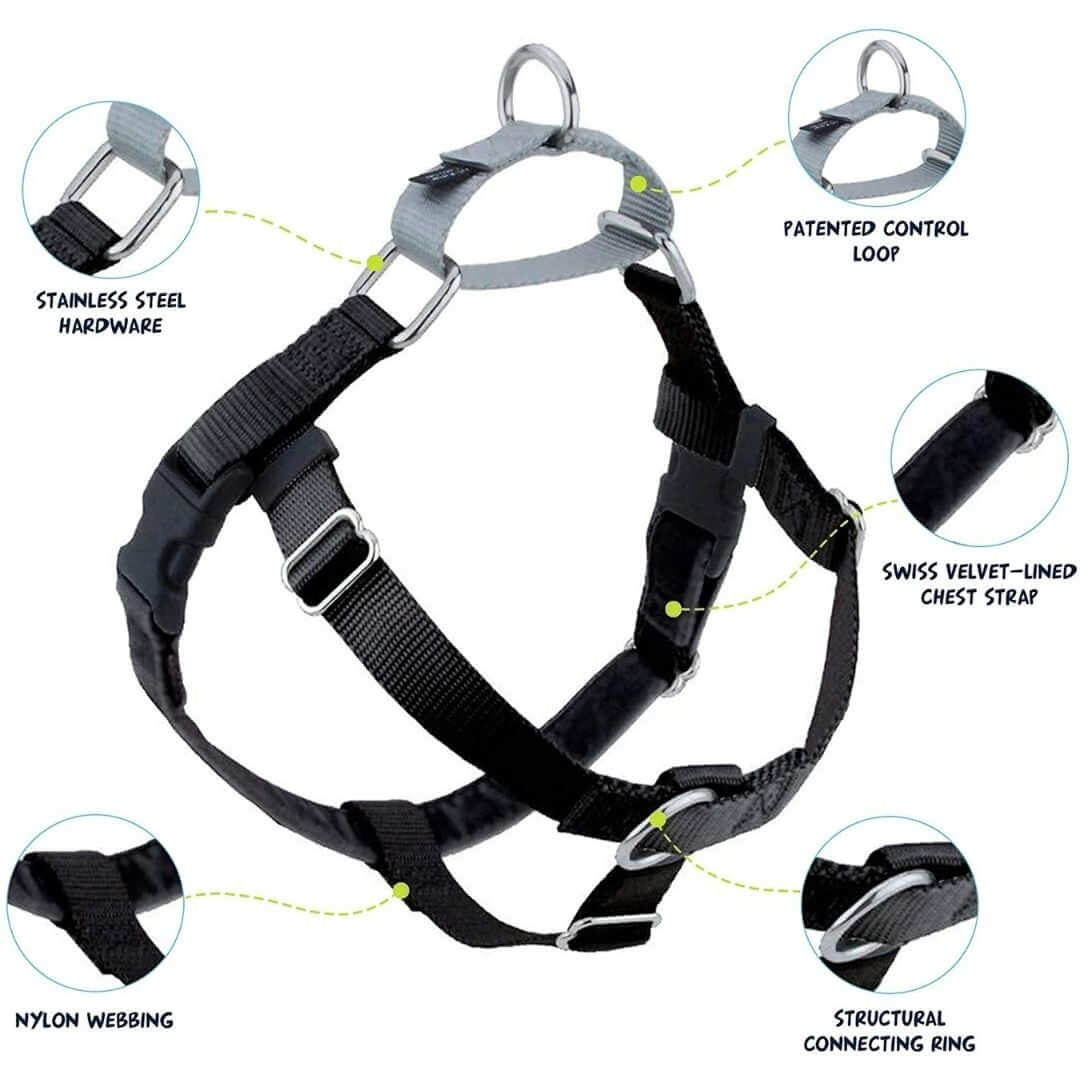 features-of-freedom-no-pull-harness | Pupford