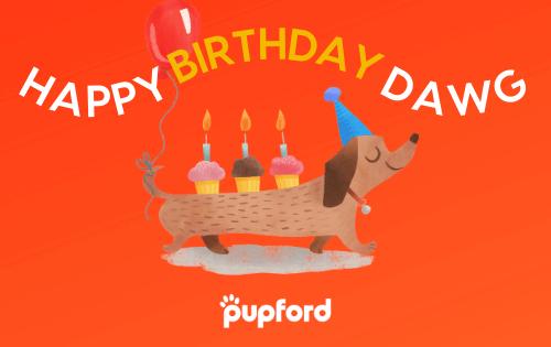 birthday gift card | Pupford