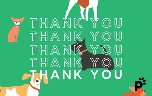 thank you gift card | Pupford