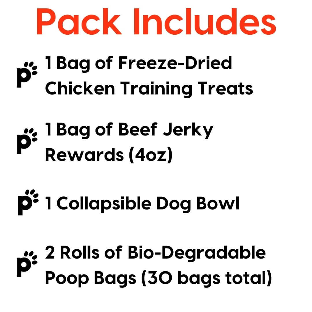 adventure pups starter pack inclusions   Pupford