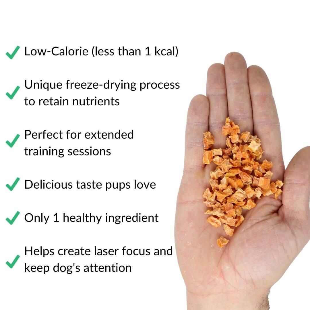 new sweet potato treats benefits product in hand white | Pupford