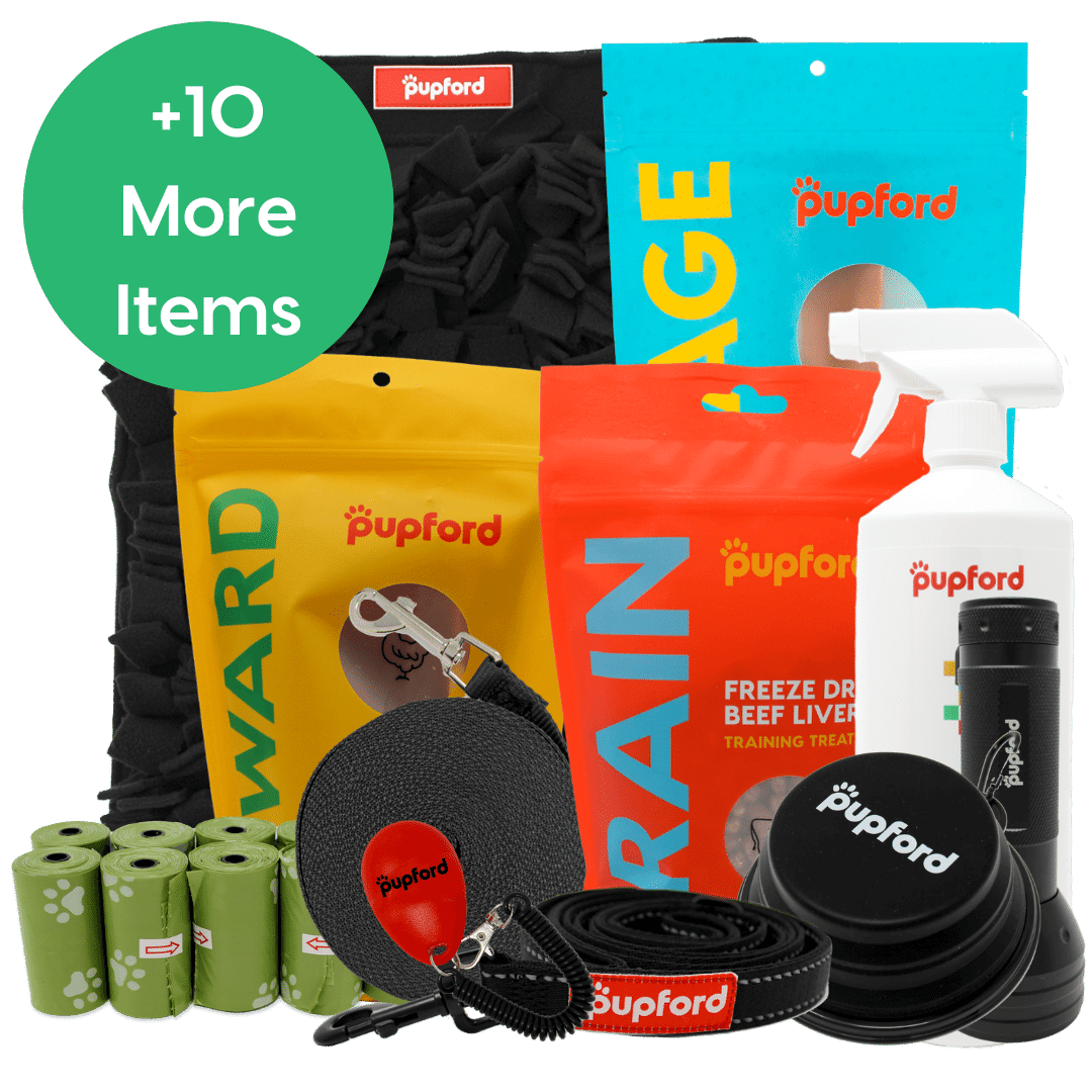 large dog one of everything pack | Pupford