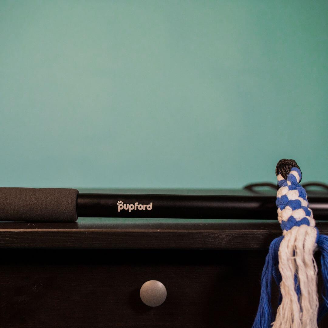 flirt pole on a table   Pupford