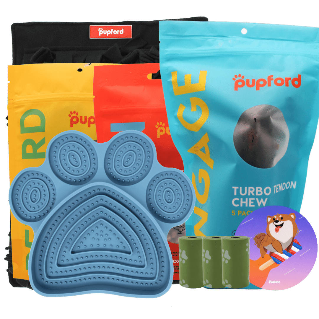 4th of july pack | Pupford
