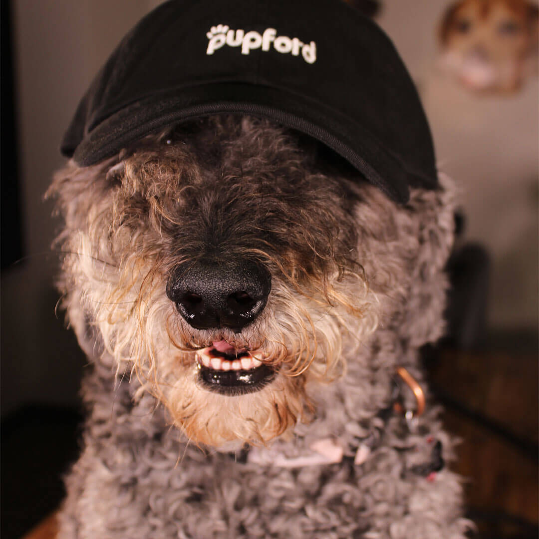 Doris-Wearing-Dad-Hat | Pupford