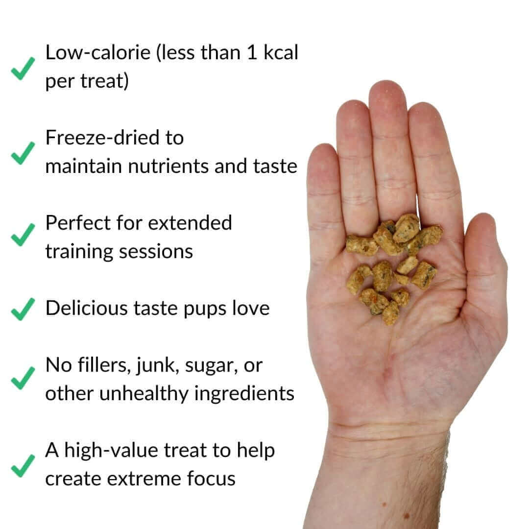salmon training treats in hand with benefits | Pupford